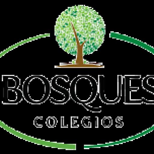 Colegio Bosques primaria